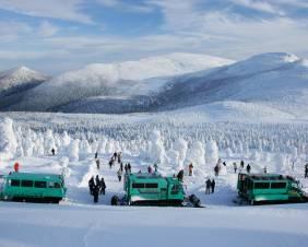 【Ichinobo ReservationSeat】暖房付雪上車で巡る、標高1,600mの冬のアクティビティ