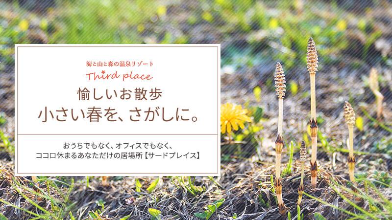 愉しいお散歩 小さい春を、探しに。