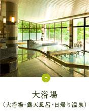 大風呂(大浴場・露天風呂・日帰り温泉)